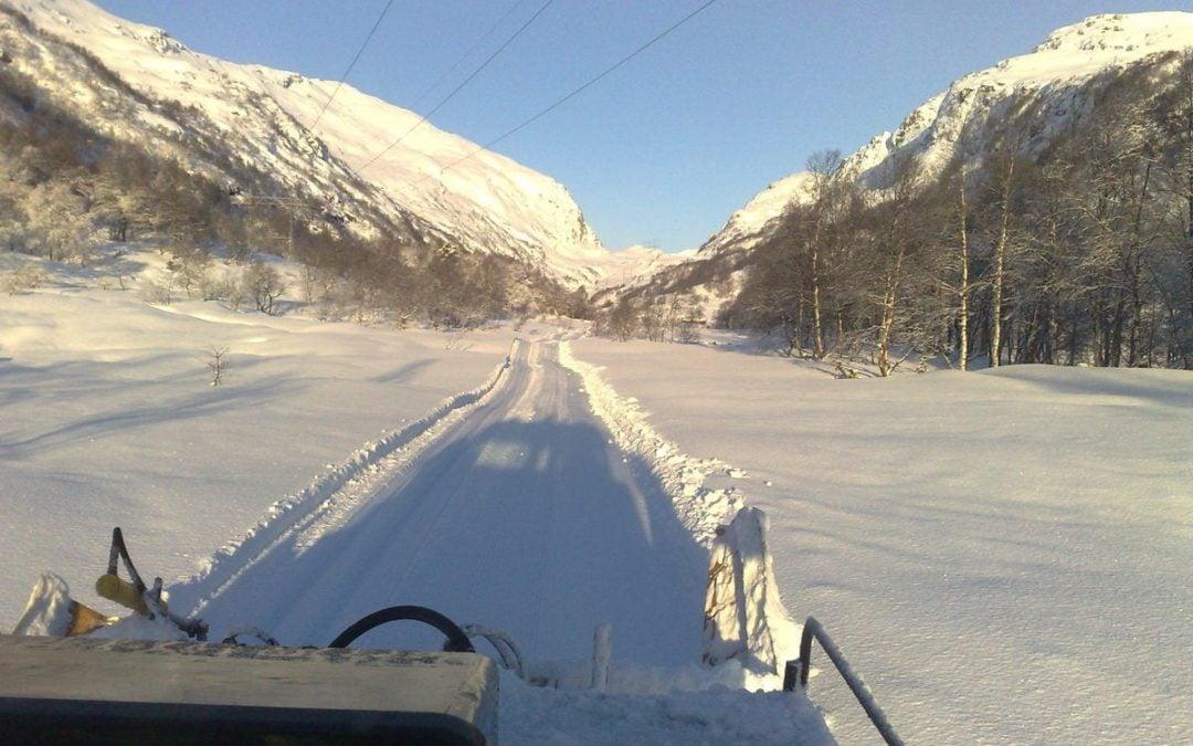 Veien mot nordstøldalen