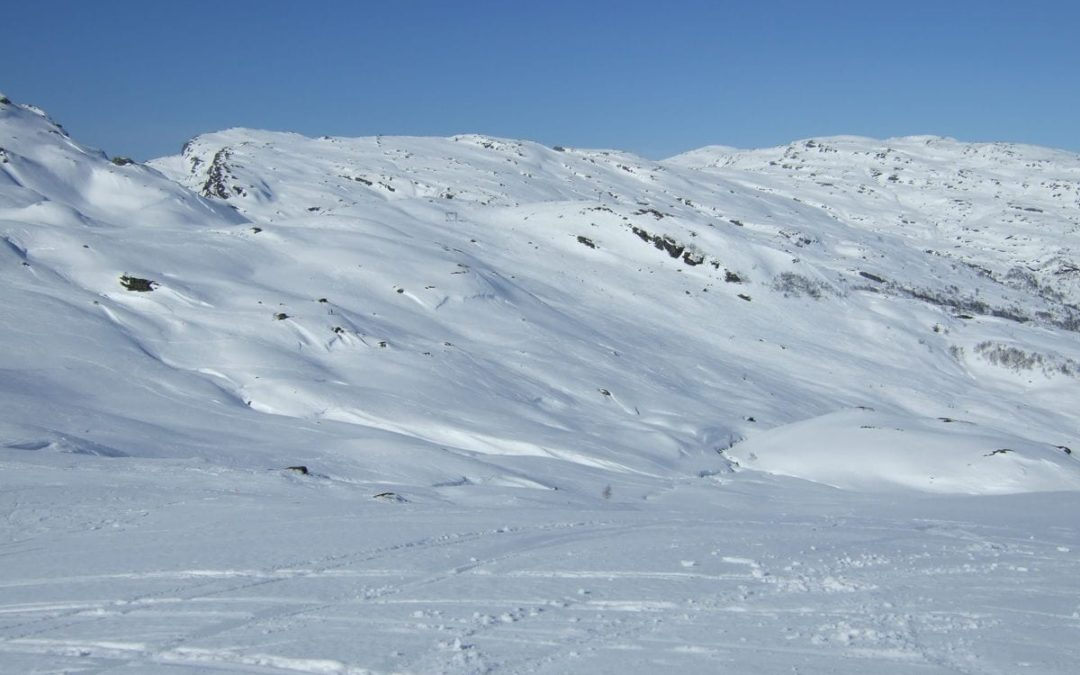 Rundtur på ski i Svandalsfjellet